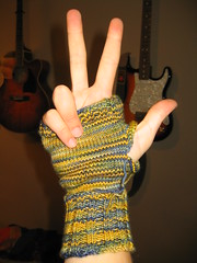 Fingerless Mittens 2