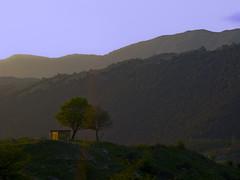 Isolated House - Casolare