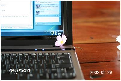 20080229_095454-b.jpg
