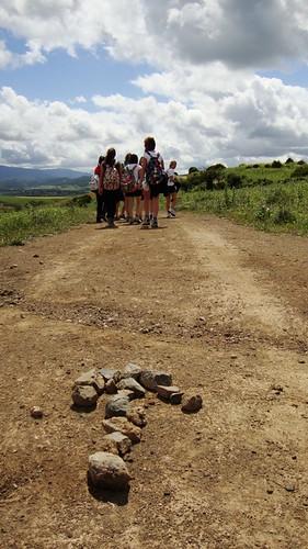 Camino de la Mesa del Esparragal