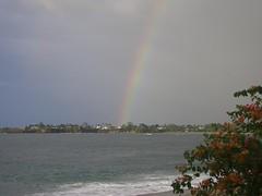 Turtle Beach Rainbow