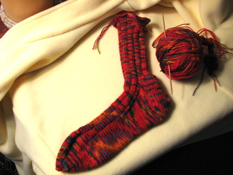 Chili Pepper Sock 1
