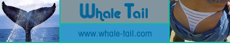 Whale Tail Header