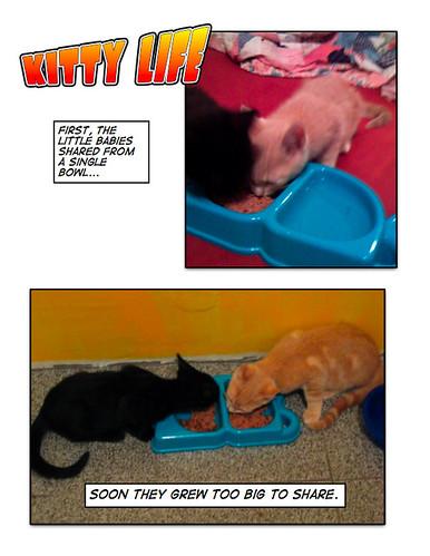 Kitty Life 19
