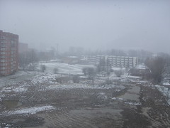 Sniegas pavasarį #2