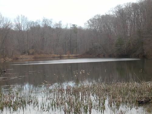 James River State Park 001