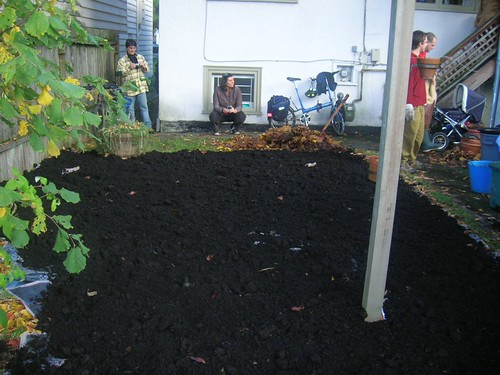 Second layer- manure