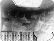 Imagen de la exposición realizada en la Bauhaus, 1923.