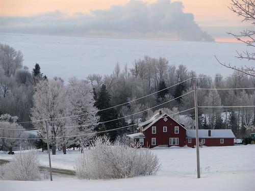Dawn on the farm