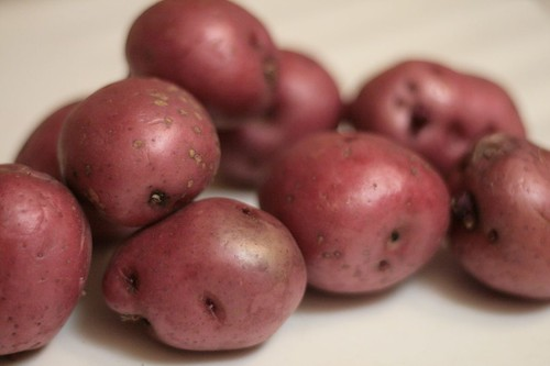 Locally grown young red potatoes