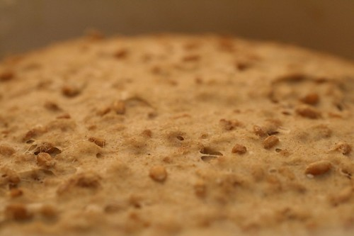 Tops of the dough with grains