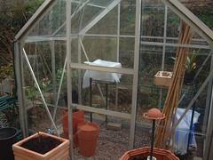 080331-greenhouse265