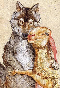Wolf und Schaf in Liebe