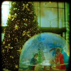 Nativity by borealnz