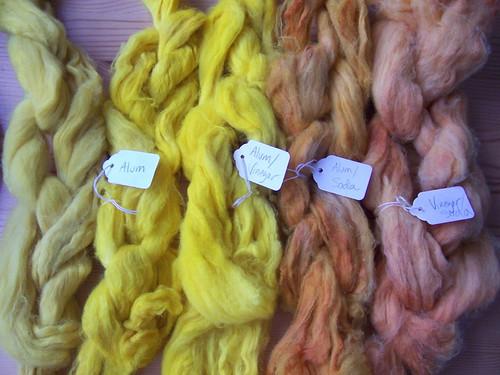 Tumeric Dyed Roving