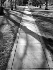 shadows_01