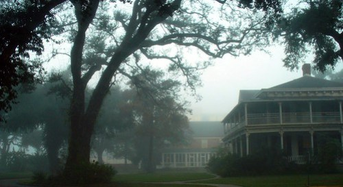 Foggy day in New Orleans