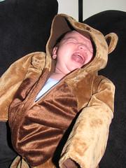 mad baby bear