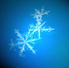 When Snowflakes Melt