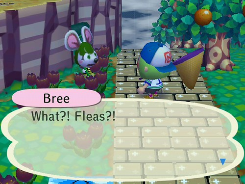 BREE HAS FLEAS!!