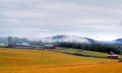 A Blue Ridge Farm