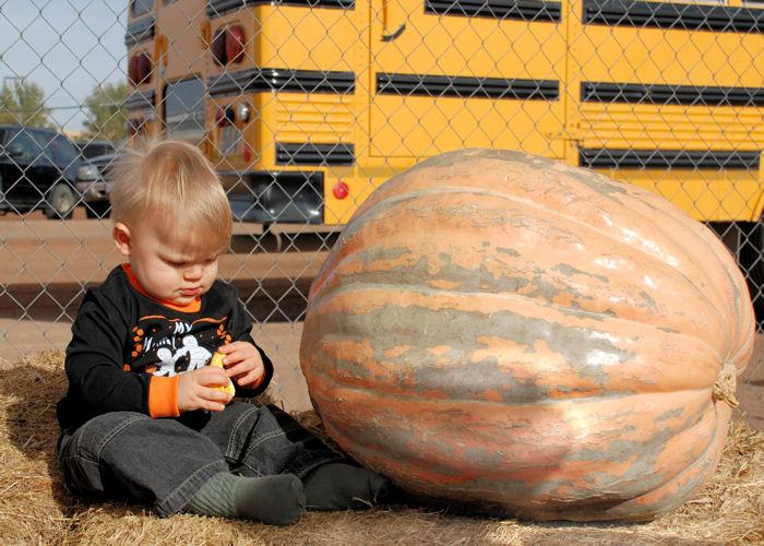 Big Gourd, Little Gourd