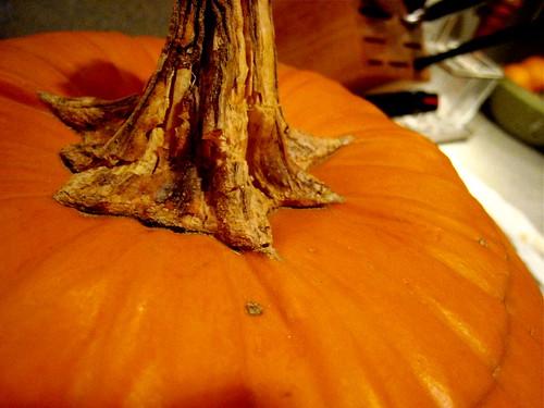 the great pumpkin - detail