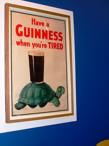 Guinness Turtle