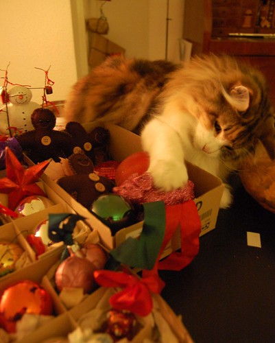 Rosina with Christmas ornaments