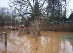 The river is on the OTHER side of the house.  This is what was left when the flood receded.