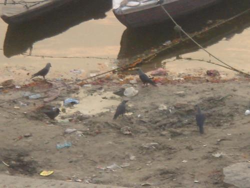 Ganges River1-66日出的恆河天空