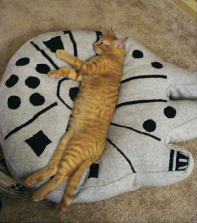 Millennium Falcon Cat Bed The Official Star Wars Blog