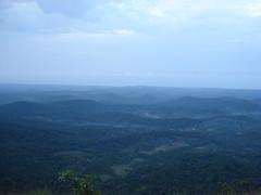 Sharavathy Valley 126