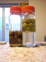 plum and liquor