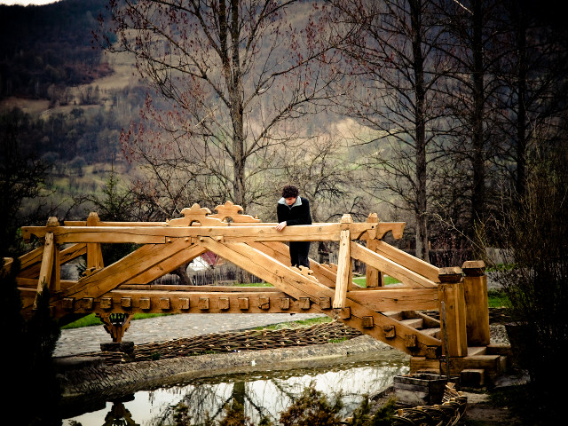 Tânărul și podul
