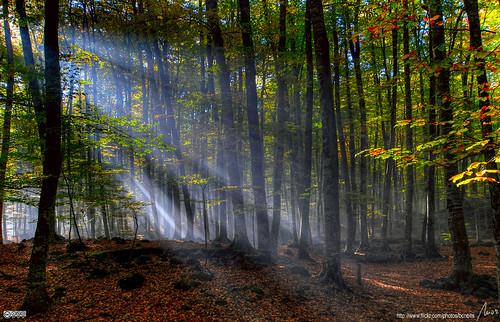cc image courtesy flickr.com/photos/bcnbits/