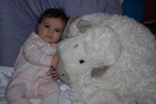 Three Month Birthday Sheep Photo