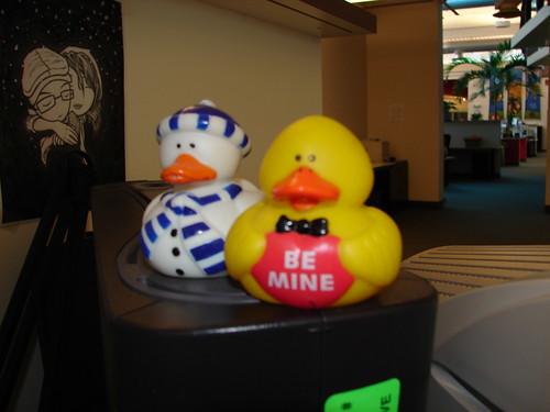 Quackity Quack!