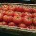 RFF tomatos
