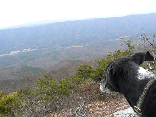 Sinking Creek Mountain - Jimmie Looks at View
