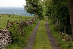 Irish countryside near Ballyconnell