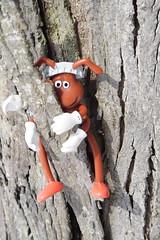 Weird Picnic Ant