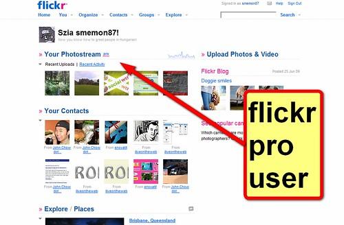 flickr pro user