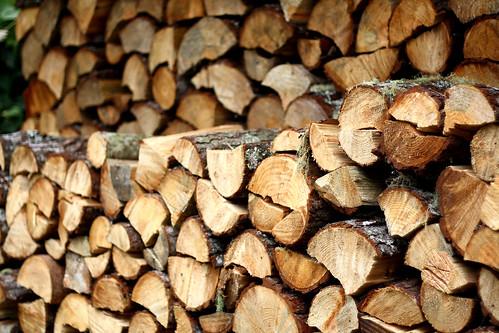 Stacking wood.
