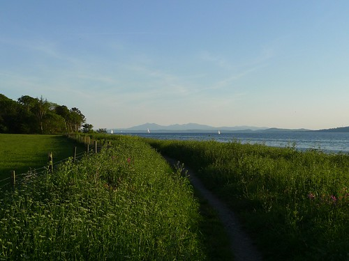 Summer path by the shore - 1