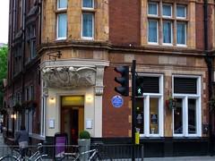 Bloomsbury Kitchen and Bar, Bloomsbury, WC1