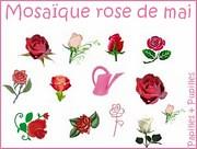 Mosaique Rose de Mai - Jeu Papilles et Pupilles