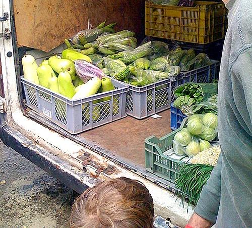 A család apraja és nagyja zöldségnézőben