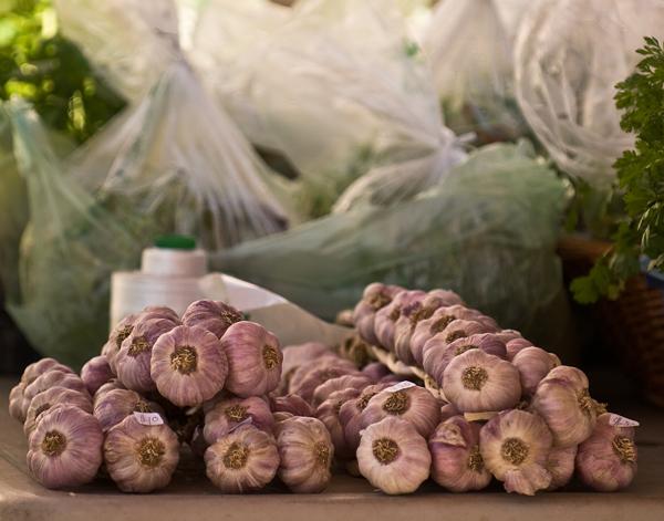garlic at the farmers market