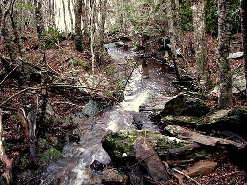 Una cascada (by morrissey)